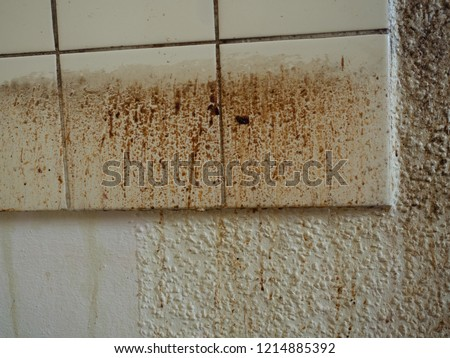 Grease spots and dirt stains on wall paper and tiles in old, filthy kitchen of demolished apartment before renovation, unclean and disgusting splashes of grunge from cooking before cleaning