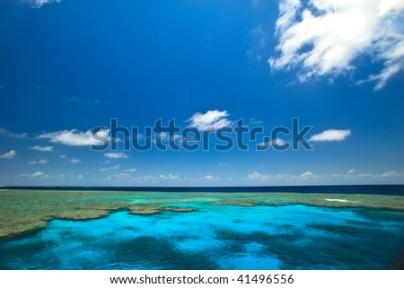 Great Barrier Reef Clam Gardens Australia - stock photo