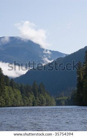 Great Bear Temperate Rainforest in British Columbia