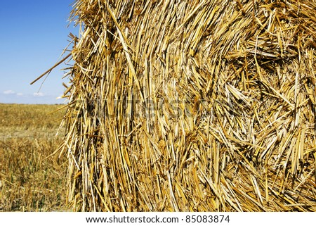 Great close-upl of large round hay or straw bale with lots of details and texture.