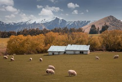 Great landscape near Wanaka in Newzealand