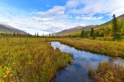 Great nature in Alaska. ( 2 )