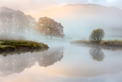 Great Oak tree with Autumn colours reflecting in misty river as the sun burns through the fog. River Brathay, Lake District, UK.