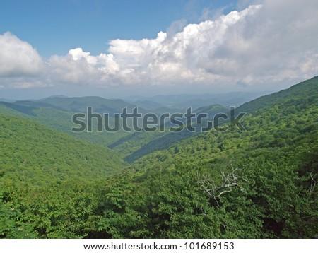 Great Smoky Mountain National Park, North Carolina vista
