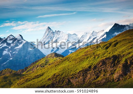 Great view of alpine hill. Picturesque and gorgeous scene. Popular tourist attraction. Location place Swiss alps, Grindelwald valley in the Bernese Oberland, Europe. Discover the world of beauty. #591024896