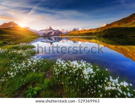 Great view of Mt. Schreckhorn and Wetterhorn above Bachalpsee lake. Dramatic and picturesque scene. Popular tourist attraction. Location place Swiss alps, Grindelwald valley, Europe. Beauty world. #529369963