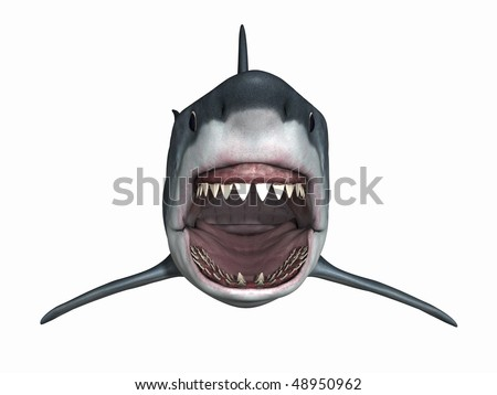 Great White Shark - stock photo