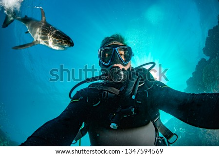 Great white shark ready to attack a scuba diver taking a selfie #1347594569