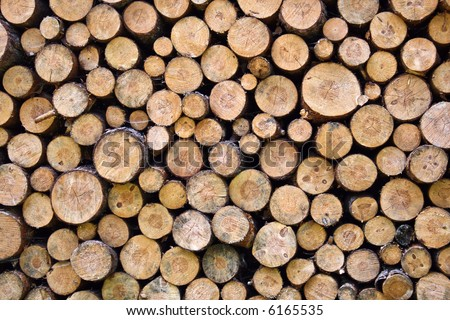 Greater woodpile from dry round fire wood