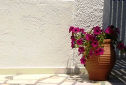 Greece, remote Donoussa island. Typical Greek courtyard with colorful flowers in a traditional ceramic vase.  Background of a plain white wall for copy space. Typography ready.