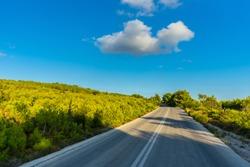Greece, Zakynthos, Endless street through green nature landscape paradise