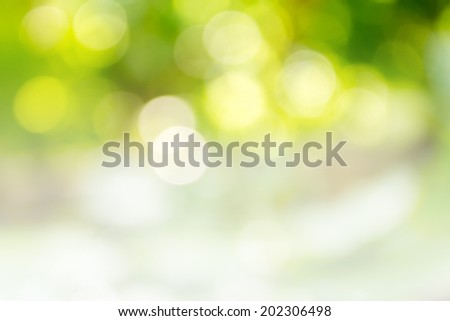 green abstract background #202306498