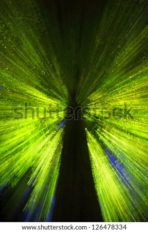 Green abstract image about green tree