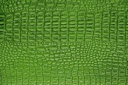 Green alligator patterned background