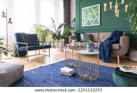 Green and blue living room interior design with rug, coffee tables and comfortable furniture #1255133293