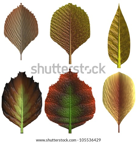 green and brown leaf collection on white background