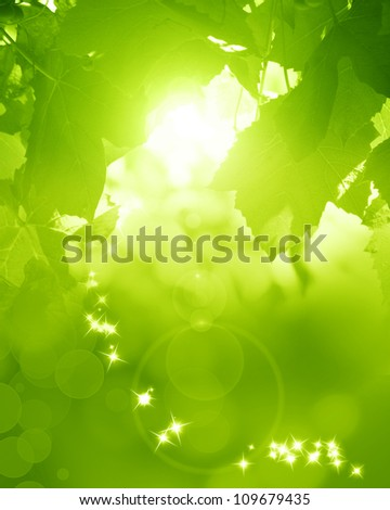 Green and fresh background with soft highlights and sparkles