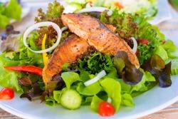 green and healthy food salmon salad.