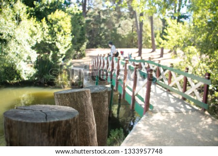 Green and red bridge on a beautiful lake surrounded by trees #1333957748