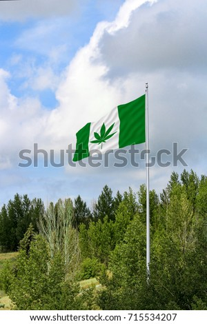 Green and white Canadian flag with a pot leaf waving in the wind on a flagpole #715534207