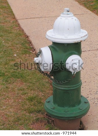 Green and White Fire Hydrant
