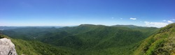 Green Appalachian Mountains in the Summer