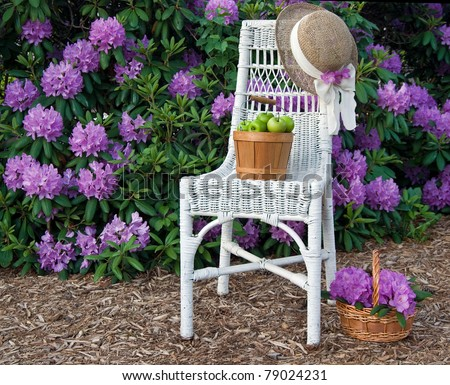 green apples on white wicker chair in garden