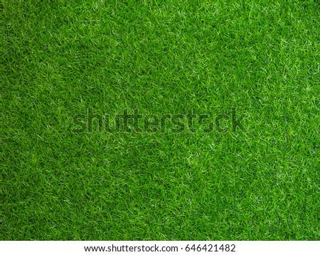green artificial grass background - Shutterstock ID 646421482