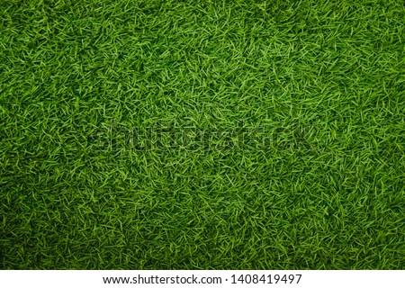 Green artificial grass natural background #1408419497