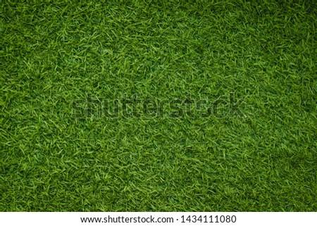 Green artificial grass natural background #1434111080