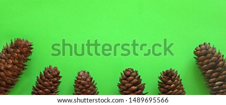 Green background and cones below. Winter holidays and minimalistic concept. Flat lay, top view, copy space. Copy space. Banner #1489695566