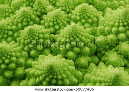 green background ,broccoli - stock photo