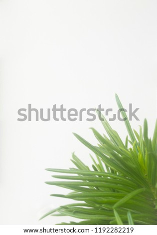 Green background with copy space #1192282219