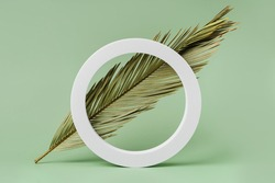Green background with palm leaf for branding and packaging presentation. Natural skincare beauty product concept.