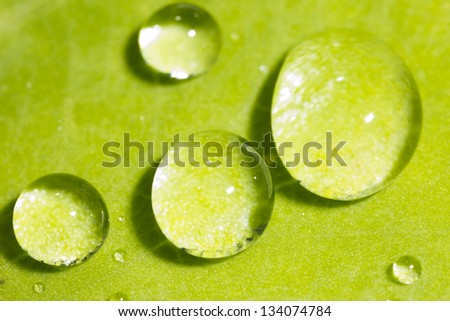 green background with rain droplets / leaf with rain droplets