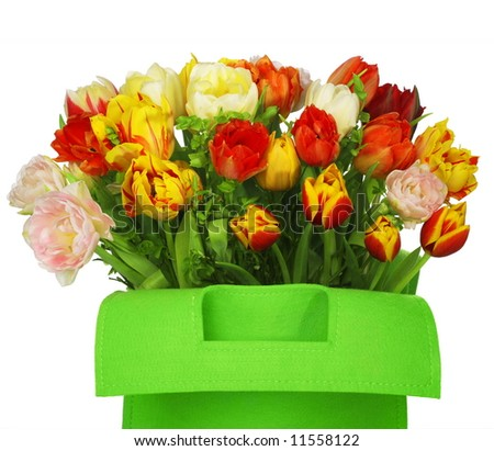 green bag with beautiful tulip bouquet. clouse-up. isolated on white background