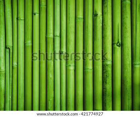 Green bamboo fence texture, bamboo background #421774927