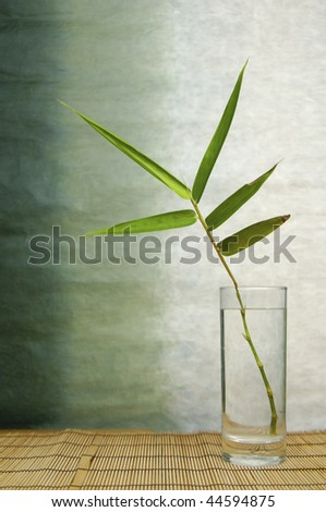 Green bamboo in glass vase on mat