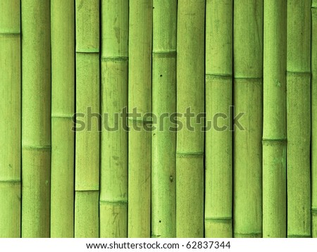 Green bamboo wall texture - stock photo