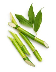 Green bamboo with leaves isolated on white background