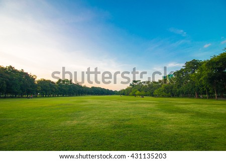 Green beautiful park and blue sky in evening ストックフォト ©