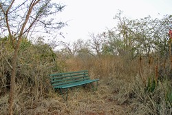 Green bench standing alone in veld