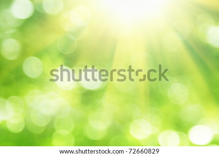 Green blurred background and sunlight.