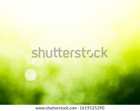 green bokeh background,green bokeh.green bokeh abstract.