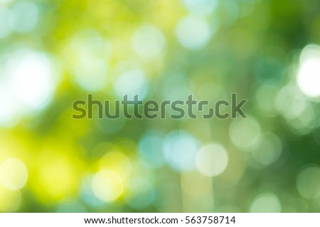 green bokeh background,green bokeh,green bokeh abstract #563758714