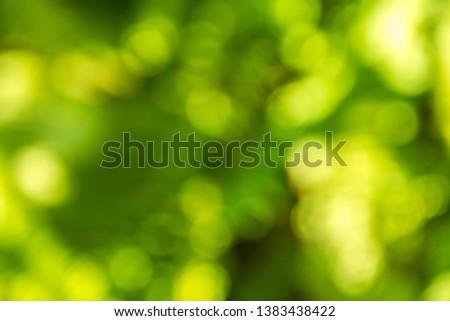 green bokeh background,green bokeh,green bokeh abstract - Image