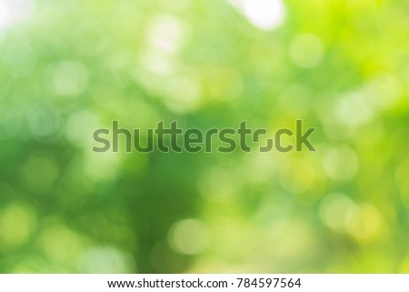 Green bokeh background ,nature round light natural green background.