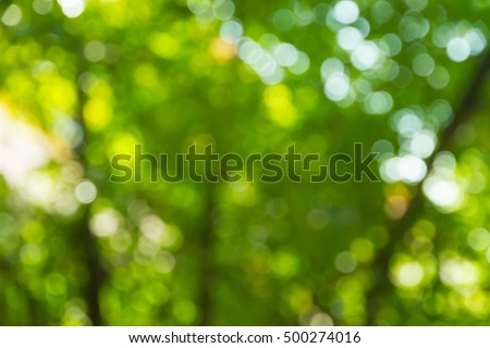 Green bokeh nature abstract background #500274016