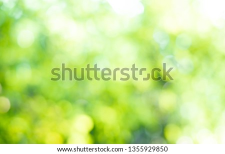 Green bokeh on nature abstract blur background green bokeh from tree