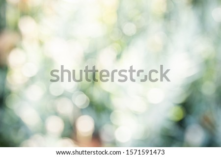 Green bokeh on nature defocus art abstract blur background. Blurred and defocused effect spring concept for design. #1571591473